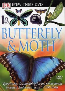 DVD-15229
